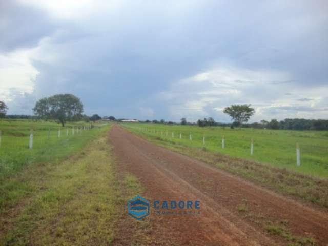Excelente fazenda com 4.398 hectares/ Tocantins!