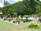 63) Jardins