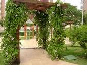67) Jardins - Playground