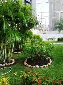 20) Jardim Gramado