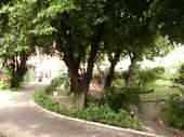 69) Jardins - Área Verde