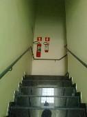Cônego - Escada,,
