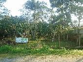 Terreno em Matinhos face leste.