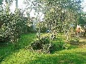Terreno próximo a Rodoviária de Matinhos.