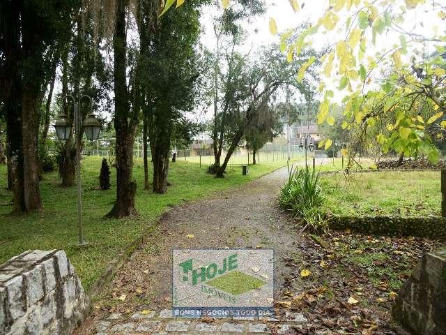 30 - Bosque