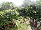 Fundos terreno horta