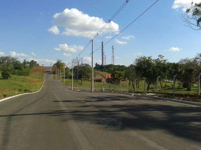 Terrenos em Linha João Alves