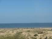 17- frente para o mar