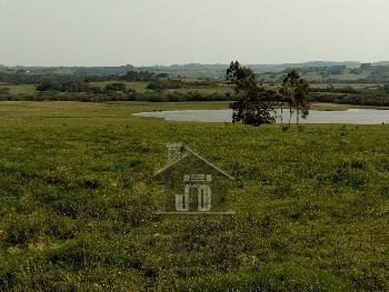 Magnífica fazenda próximo a Pelotas