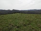 Campo p/ pecuária no Marinheiro.