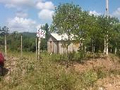 Sítio c/ casa de madeira Passo dos Oliveiras