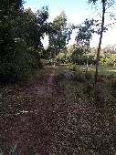 Chácara a 2Km de Canguçu