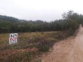 Sitio 2ha Gloria 1º distrito Canguçu