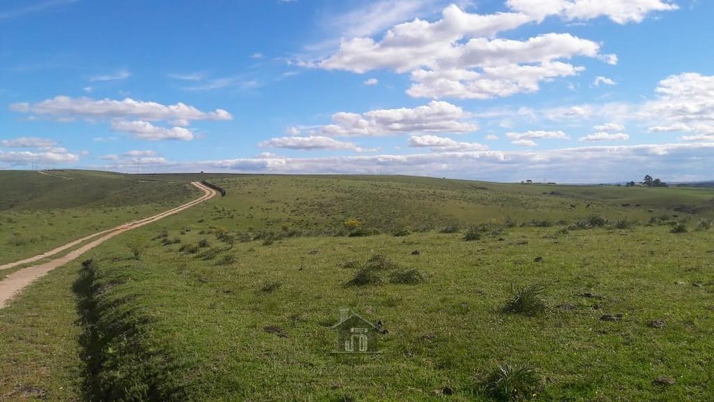 Área para agropecuária 3º distrito Boqueirão.