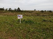 Terrenos bairro Triangulo.
