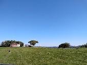 Campo 3º distrito para Agropecuária.