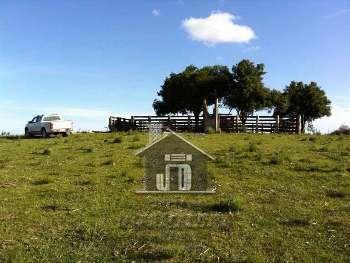 Area rural em Pinheiro Machado/ RS.