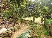 Sitio no Bachini