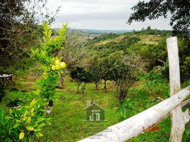 3 hectares Bachini 006
