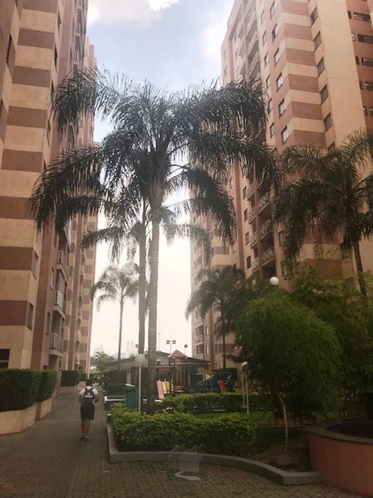fachada (9)