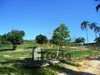 Área em Ilha de Guaratiba