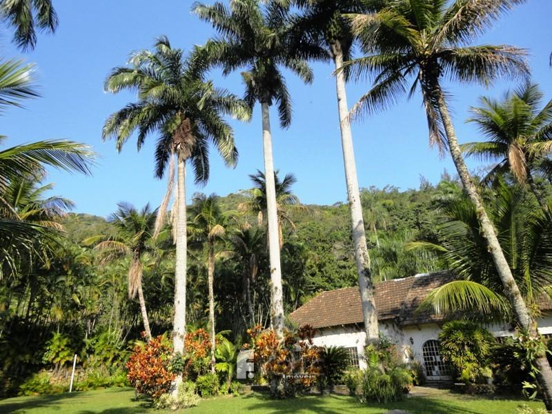 Sitio em Ilha de Guaratiba