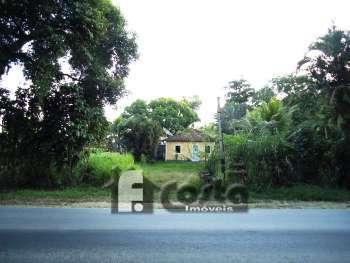 Terreno em Ilha de Guaratiba C/11.201m²