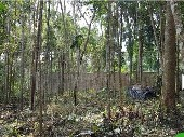 Terreno de 1070 m² em Embu Colonial