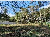 Terreno de 1060 m² em Embu Colonial