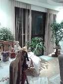 Apartamento 2 quartos Pq Taboão Taboão da Serra
