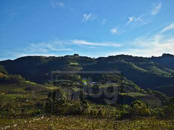 Terreno para s�tio - Faria Lemos| Vale Aurora