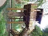 Bosque Real-Casa arvore