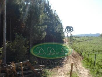 Fazenda na zona rural de Lages