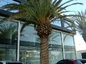 sala comercial torres rs