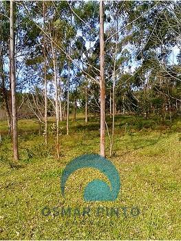 Chácara 2 hectares em SC
