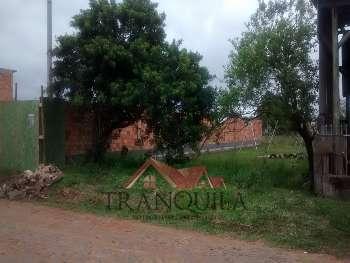 Terreno na Vila São João