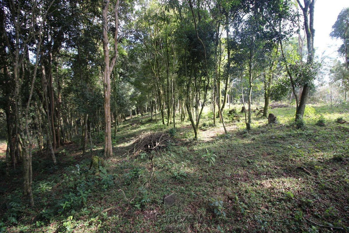 Chácaras a partir de 5000 m em Fazenda Rio Grande