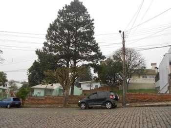 Dois terrenos juntos Cinquetenário Caxias do Sul