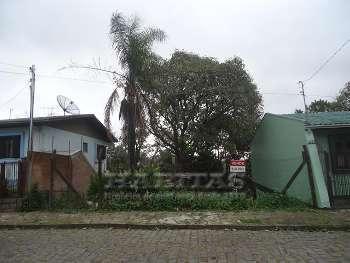 Terreno plano Rio Branco Caxias do Sul
