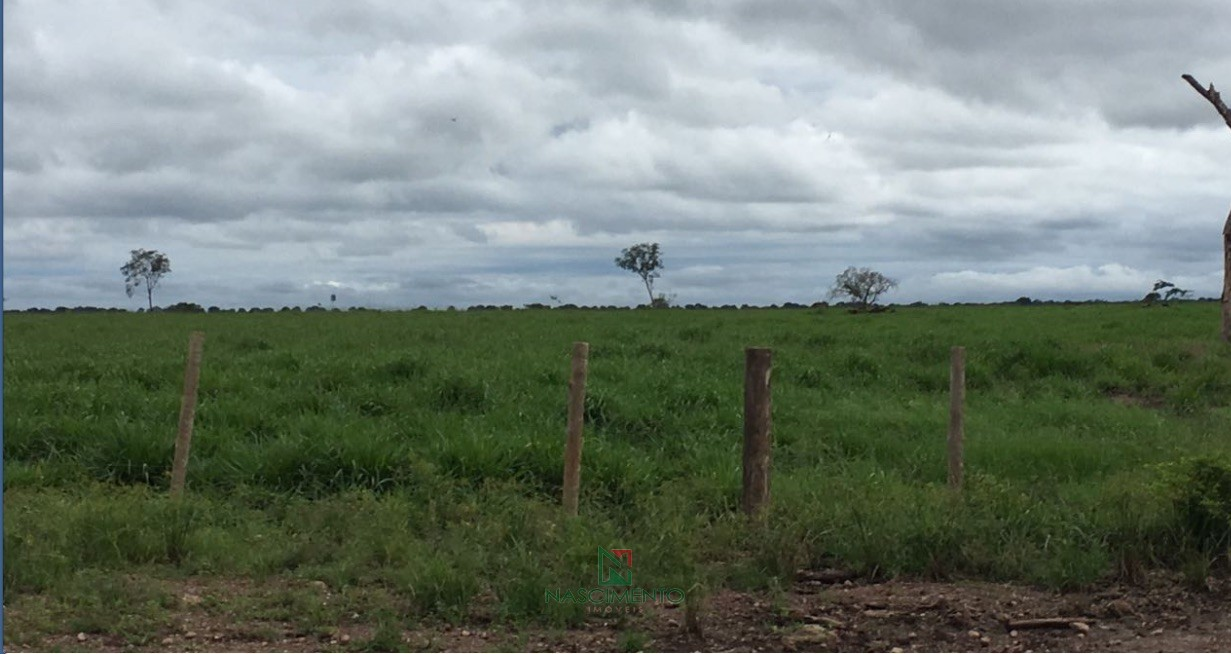Pastagem Fazenda Fortalez