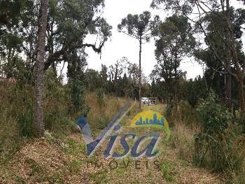 Chácara 32.098 m² Avenquinha Campo Alegre
