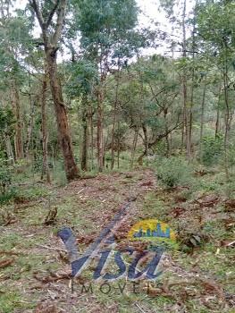 Chácara em Barro Preto Rio Negrinho