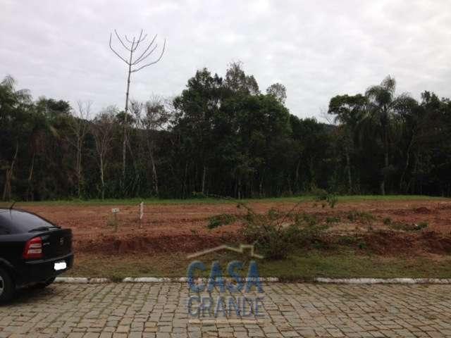 Haras Rio do Ouro Rogerio2