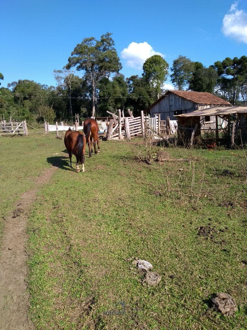 07-Chácara Colônia Santa Cruz